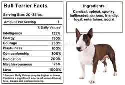 BULL TERRIER Facts LARGE FRIDGE MAGNET