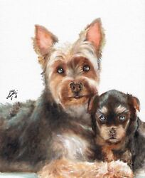 Original Oil Art YORKSHIRE TERRIER Portrait Painting YORKIE PUPPY DOG Signed