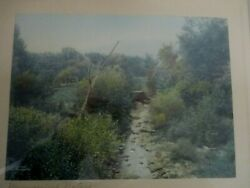 1906 Taber Prang Art Co Signed Willis Of Dean Murmuring Waters Tinted Photograph