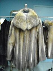 Brand New Muskrat And Coyote Fur Jacket Coat Woman Women Size All