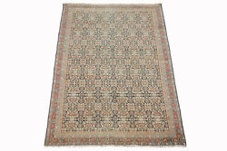 Antique 6X9 Agra Herati Rug Hand-Knotted Cotton Carpet circa 1900 (5.9 x 8.7)