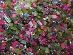 Tourmaline Crystal All Natural Green/red/pink Congo 1/4 Pound Lot Mixed Grade