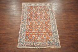 6X9 Antique Indian Agra Area Rug 1920's Hand-Knotted Cotton Carpet (5.7 x 8.9)