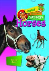 NEW Horses What Are They Saying? 9781624690075 by Gagne Tammy