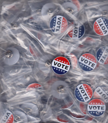 100 VOTE classy metal lapel pins 100% EXCELLENT QUALITY SATISFACTION GUARANTEED!