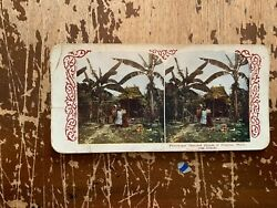 1905 Thatched Houses Of Filipinos Philippines Islands Hc White Stereoview