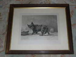 RARE LARGE ANTIQUE MAUD EARL SCOTTISH TERRIER SIGNED LIMITED ED DOG PRINT 1910