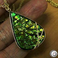 Striking 24.5 X 36.0mm Ammolite Pendant Necklace Solid 18k Yellow Gold P4952