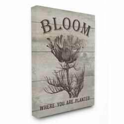 The Stupell Home Decor Collection Bloom Where Youre Planted Vintage Flower Line