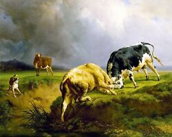 Bull Fight By French Jacques-raymond Brascassat. Repro Choose Canvas Or Paper
