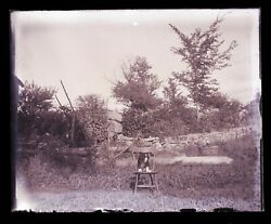 Late 1800s Early 1900s Glass Negative, Dog On Chair Outside , Unknown Location