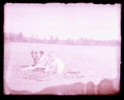 Late 1800s Early 1900s Glass Negative, Child And Large Dog