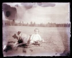 Late 1800s Early 1900s Glass Negative, Second Child And Large Dog