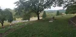 2 Burial Plots East Tn Happy Valley Memorial Park. Sectionsermon On The Mount