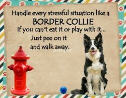 BORDER COLLIE Stressful Situation Magnet