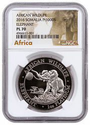 2016 Somalia 1 Oz Platinum Elephant Proof-like Sh1000 Ngc Pl70 Sku58459