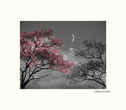 Pink Gray Bedroom Tree Moon Home Decor Wall Art Matted Picture