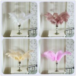 Fashion Color Feathers Fluffy 45-60cm Large Feathers For Party Decoration Home