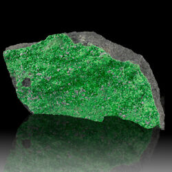 3.6 Uvarovite Twinkling Emerald Green Crystals To 1mm On Matrix Russia For Sale