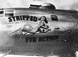 Usaaf B29 Bomber Nose Art Stripped For Action Ww2 Wwii 5x7