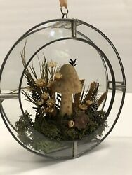 Vintage Bohemian Small Round Hanging Glass Terrarium With Dried Flowers Mushroom