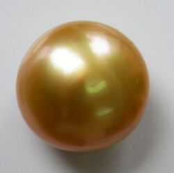 17.4mm Australian Gold South Sea Pearl Undrilled 100 Untreated +cert Available