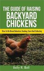 The Guide Of Raising Backyard Chickens: How To Do Breed Selection Feeding Care