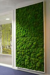 Air Purifier Forest In The House Interior Design Of Plants House Vegetation