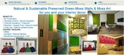 Forest Wall Design Interior Wall Live Green Nature Plants Moss Natural Flowers