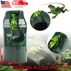 Drinking Water Fountain for Reptile Lizard Chameleon Feeding Dispenser Automatic
