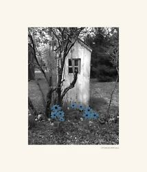 Black White Blue Vintage Outhouse Flowers Photography Photo Matted Bathroom Art
