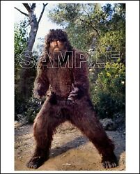 Bionic Woman 8x10 Photo 201-03 Ted Cassidy As Bigfoot