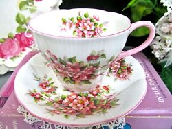 Royal Albert Tea Cup And Saucer Apple Blossom Pink Blossom Time Series Teacup