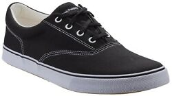 Hush Puppies Mens Chandler Lace Up Trainer Black Canvas