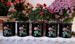 5 Lovely Vintage French Tin Canisters Black With Pink Rose 1950's Toleware