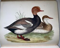1855 Morris Beverley R. British Game Birds And Wildfowl 4to. 60 Plates
