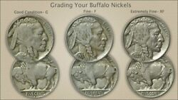 Two Rolls Of Various Readable Date Buffalo Nickels--80 Coins Total Each Win