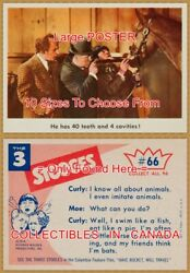 Three Stooges 1959 Cavities 66 = Poster Trading Card 10 Sizes 18 - 4 1/2 Feet
