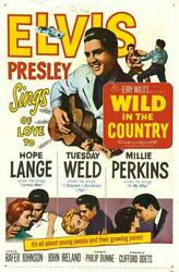 Wild In The Country Movie Poster 11 X 17 Elvis Presley Hope Lange A