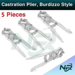 Nrsurgical 5 Pieces Elastrator Castration Large Plier Rubber Ring Applicator Ca
