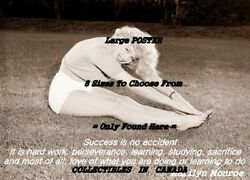Marilyn Monroe Quote 2 Success Is No Accident = Poster 8 Sizes 18 - 3 Feet