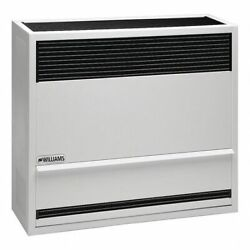Williams Comfort Products 2203821 Surface-mount Gas Wall Heater Propane