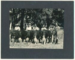 Iowa State Fair Vintage 1935 Baby Beef County Group Cattle Champions Photograph