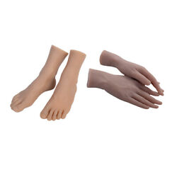 2 Pairs Mannequin Fake Hands+fake Foot Fits For Model Display Art Sketch