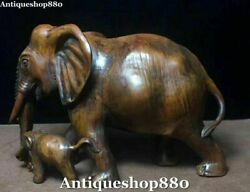Rare China Boxwood Wood Carving Fengshui Elephant Animal Mother Son Kid Statue