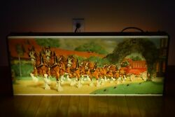 Rare Vintage Budweiser Beer Lighted Sign Clydesdale Horse 1950's And Michelob