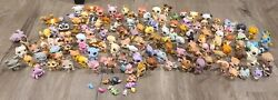 Lps Lot Huge Over 100 Pets And Furniture All Authentic Littlest Pet Shop