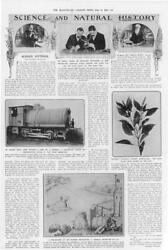 1911 Antique Print -science Engine Steam Basil Mosquitoes German Telegraphy449