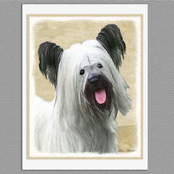 6 Skye Terrier Dog Blank Art Note Greeting Cards