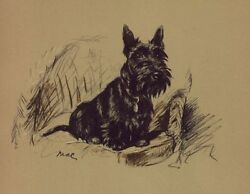 Scottish Terrier - Lucy Dawson Dog Print - MATTED